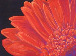 """Orange Blossom"""